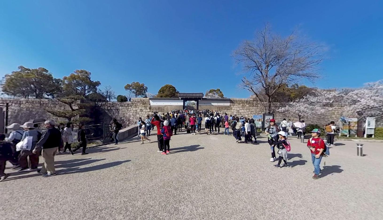 春の大阪城6