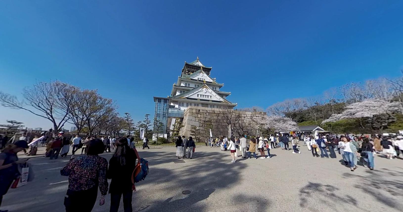 春の大阪城5