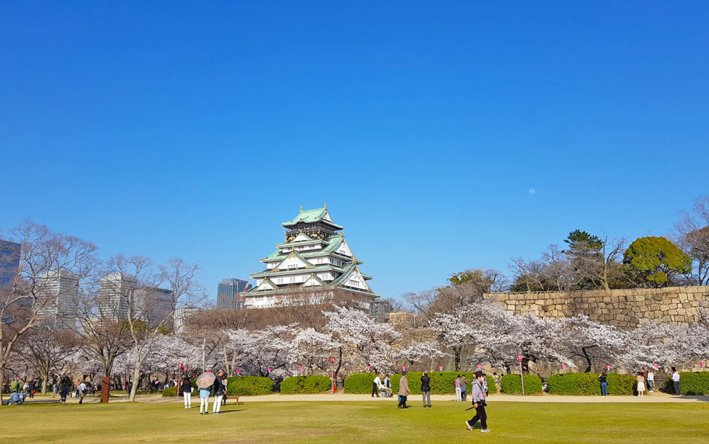 春の大阪城(大阪府)